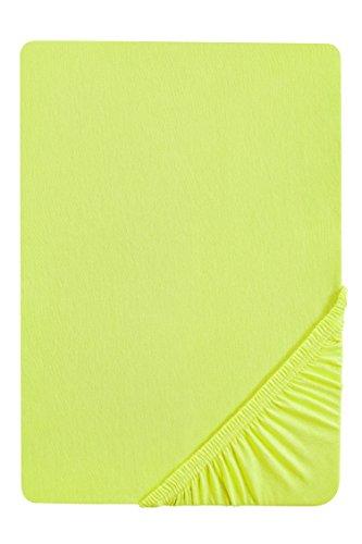 biberna 0077144 Feinjersey Spannbetttuch (Matratzenhöhe max. 22 cm) (Baumwolle) 90x190 cm -> 100x200 cm, apfelgrün