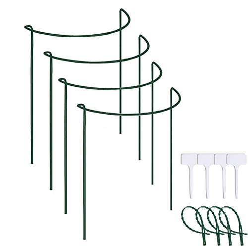 Fuhakang 27.5' 4Pcs Plant Support Stake Half Round Ring Metal Stainless Steel Garden Border Path Supports Plant Support Ring Cage for Roses,Hydrangeas,Flowers Vine,Tomato