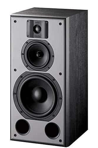 Indiana line DJ 308 Frontale / stereo altoparlante, Coppia