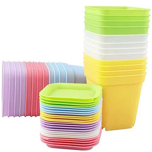 Macetas cuadradas de plástico,24 Piezas de macetas plásticas,Macetas de plástico Grueso,Bandejas Macetas Plásticas,Macetas de Plástico,Macetas de Plástico de Colores,Mini Macetas Coloridas (A)