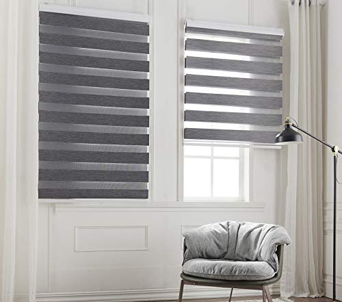 Taiyuhomes Day and Night Zebra Roller Blind Double Fabric Translucent or Blackout Vision Curtains for Window and Door with Aluminium Cassette(Grey 65x150)