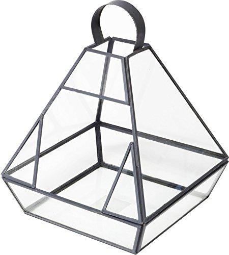Ivyline Ir-6322 Laisse Terrarium 19 x 23 – Transparent