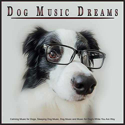 Sleeping Music For Dogs, Calming Music for Dogs & Dog Music Dreams