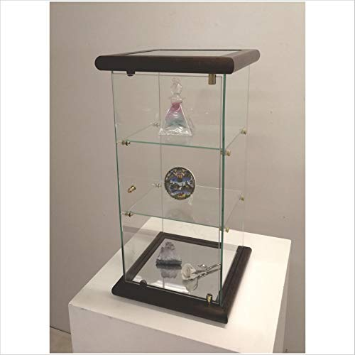 VM ART DESIGN GLASS BY VETRERIA MICELI Vetrinetta espositiva da banco (Dark Wood)