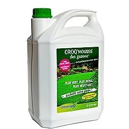 Agro Sens Croq'Mousse, Anti-Mousse fortifiant pour Gazon. 5 L