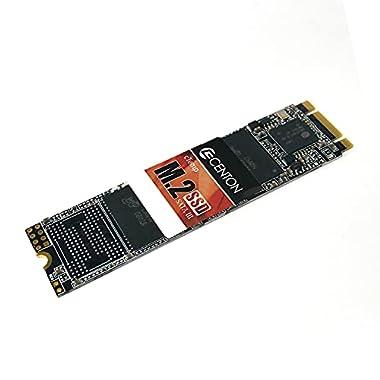 Centon Premium SSD, Frustration Free, PCIe 4.0 x4, NVMe 1.3, M.2-2280; R/W 5500/1800 MB/s (4TB)