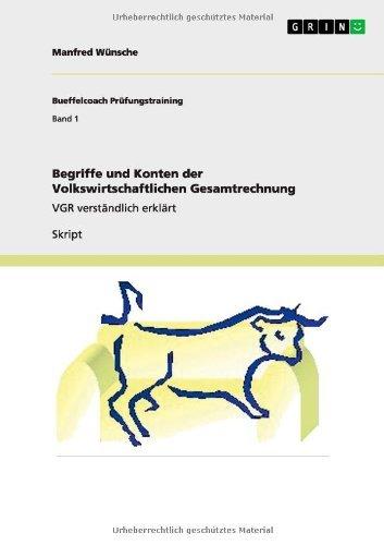 Begriffe und Konten der Volkswirtschaftlichen Gesamtrechnung: VGR verständlich erklärt (German Edition)