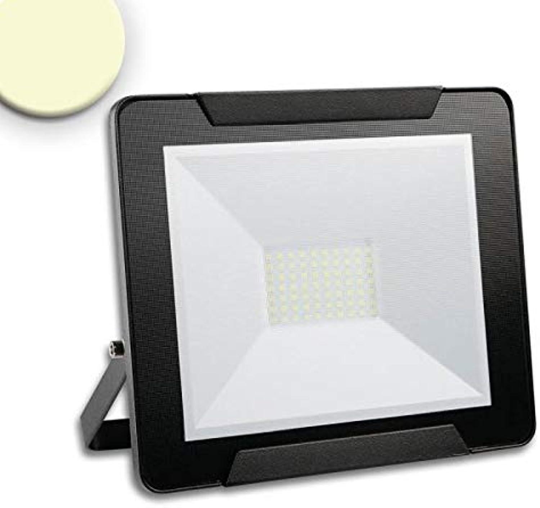 LED Fluter Warmweiss 50 W 4000lm IP65 Schwarz