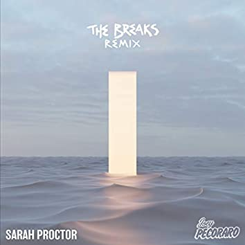 The Breaks (Joey Pecoraro Remix)