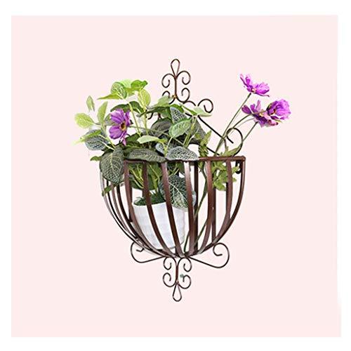 Support à Plantes en Fer Forgé à Montage Mural Support à Fleurs Ensemble Jardin ExtéRieur Balcon Mur Support à Plantes pour IntéRieur Suspendu Support De Pot