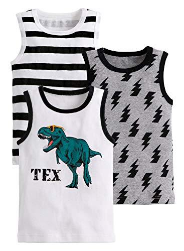 Générique Crazy Gotend - Juego de 3 camisas sin mangas de algodón con dinosaurios para niños y niñas Dino + rayas + Lightning 5-6 Años