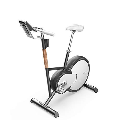 HHH Ciclismo de Interior Multifuncional Bicicleta de Entrenamiento Cardiovascular Bicycle Ejercicio Calentar Calorías Quemar Control de Ajuste Magnético Resistencia Bike