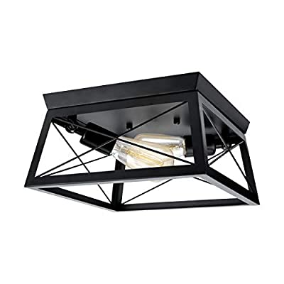 Industrial Ceiling Light - Farmhouse Light Fixtures Flush Mount Ceiling Lights Black 2-Light Metal Cage Shade for Kitchen Island Dining Room Foyer Hallway