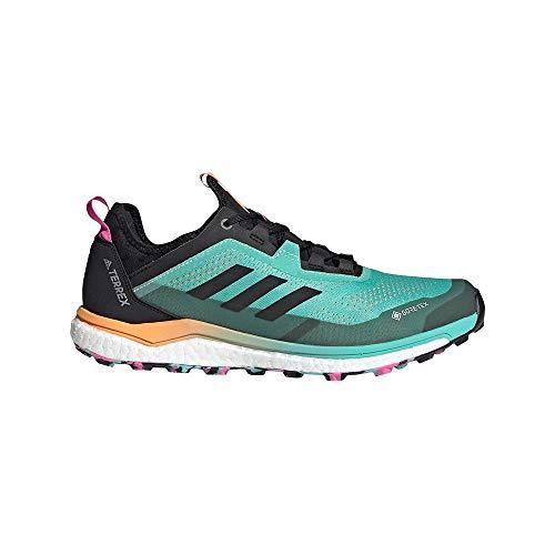 adidas Terrex Agravic Flow GTX, Zapatillas de Trail Running Hombre, MENACI/NEGBÁS/ROSCHI, 41 1/3 EU