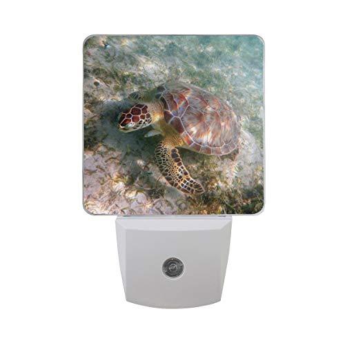 AOTISO Zeeschildpad onderwater in helder oceaanwater met zeegras Mariene dierenschildpadden Auto Sensor Nachtlampje Plug in Indoor