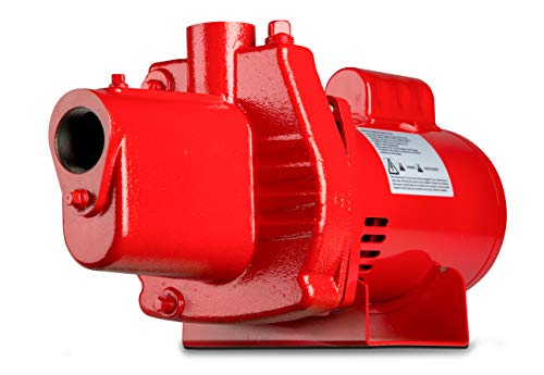 Red Lion RJS-100-PREM 602208 Premium Cast Iron Shallow Jet Pump for Wells up to 25 ft, 9.1 x 17.8 x 9.1 inches