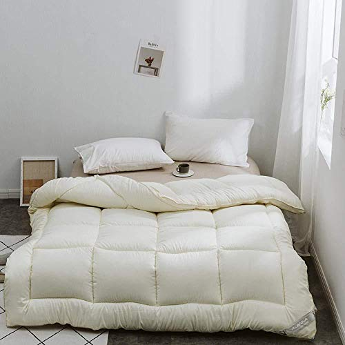 Gasgff extra warmes Winterbett Daunendecke,Single Duvet Winterdecke Bettwäschekern Kühle Bettdecke Bettdecke Winter Warme Bettdecke-EIN_195 x 215 cm - 3 kg,daunendecke 155x220 leicht
