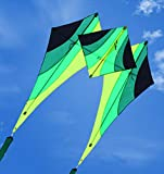 ZFLL Cometa Nuevo diseño 3D Nylon Kite Adultos Cometa Volando Juguetes con línea de Carrete de Cometa Gratis wei Kite