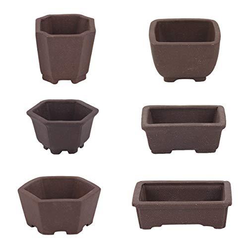 Happy Bonsai 6 pc Zisha Mini Bonsai Pots 2' Width