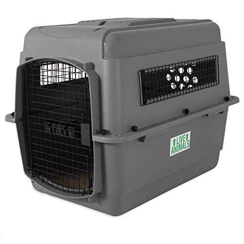 Petmate Sky Kennel Pet Carrier, 32 Inch