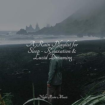 A Rain Playlist for Sleep - Relaxation & Lucid Dreaming