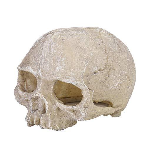 Jingyi Estatua del cráneo del Acuario, Estatua del cráneo del Hueso de la Cabeza de Resina para la Serpiente Lagarto araña araña escorpión Cueva Acuario pecera decoración del Paisaje