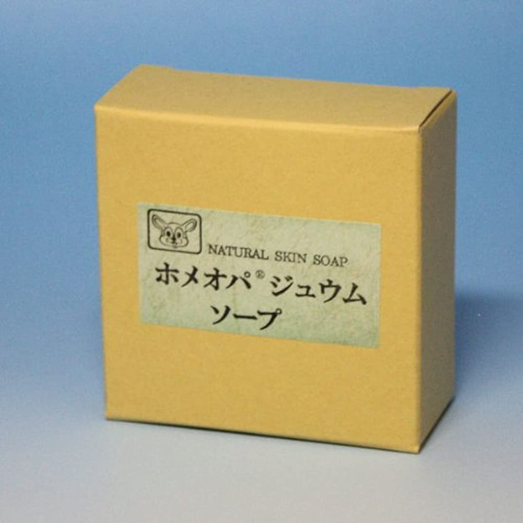知覚的マッシュカテゴリーホメオパジュウムソープ 100g