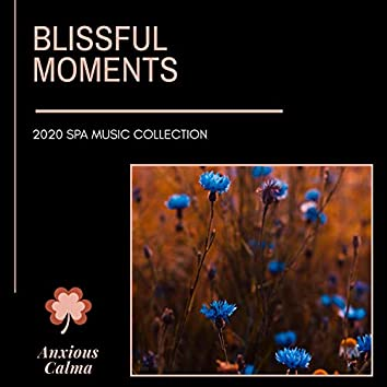 Blissful Moments - 2020 Spa Music Collection