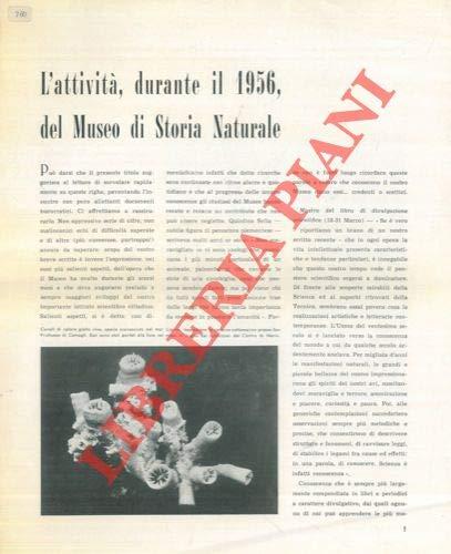L'attivita', durante il 1956, del Museo di Storia Naturale.