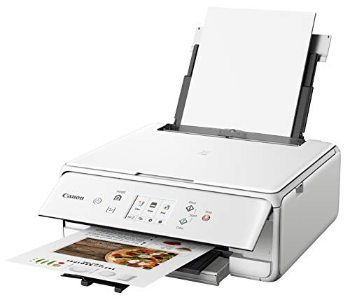 Canon PIXMA TS6220 Wireless All in One Printer with Mobile Printing, White Photo #5