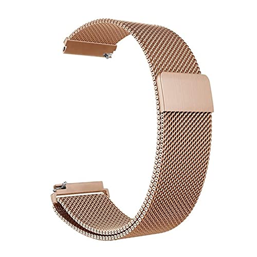 RVTYR Reloj Correa, 12 mm 14 mm 16 mm 18 mm 20 mm 22 mm 24 mm Metal Universal Metal Anillo de Acero Inoxidable Red Brazalete con Pulsera de Pin de liberación rápida Correas de Repuesto