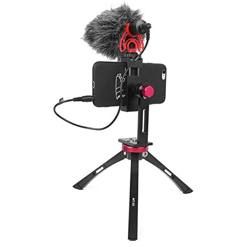 BOLORAMO Microfono, Microfono di Registrazione Potente per Musica dal Vivo