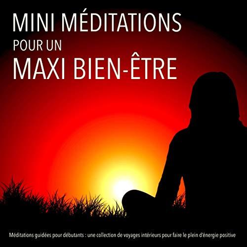 Couverture de MINI méditations pour un MAXI bien-être