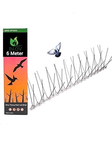 In-OV - Ahuyentador de palomas de acero inoxidable, bueno contra pájaros, gallinas, protección contra pájaros, picos para pájaros, robustos, fácil montaje, 6 metros (24 x 25 cm)