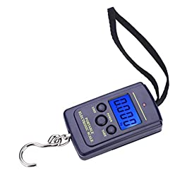 Kuuleyn Échelle de pêche, Balance Suspendue numérique électrique en Plastique Portable avec Bagage de pêche d'outil de…