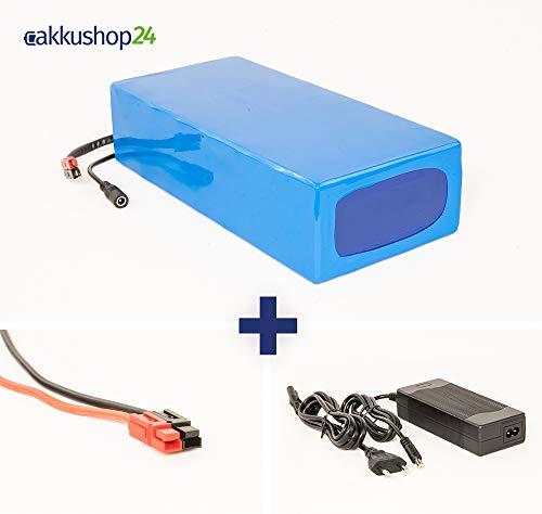 Lithium-Ionen Akku 48V 15Ah 720Wh Akkupack incl. 30A BMS & Ladegerät für E-Bike Scooter Pedelec