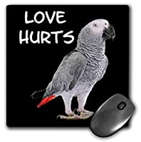 3dRose Mouse Pad Love Hurts with Portrait of African Grey Parrot Bird - 8 by 8-Inches (mp_306938_1) [並行輸入品]