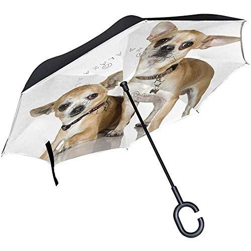 Umgekehrter Regenschirm Cavalier King Charles Spaniel Welpen-Umkehrschirm UV-Schutz Winddicht für Auto Regen Sonne Outdoor Schwarz