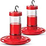 SEWANTA Hummingbird Feeders for Outdoors 16 Ounce - [Set of 2] First Nature Hummingbird Feeder Include, Perch with 10 Feeding Ports - Bundled with 2 Hanging Chains 9.5 Inch (4 Pcs Set)