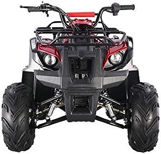 Best 300cc 4 wheeler Reviews