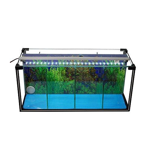 Komplettset Aquarium Zucht-Becken Betta 24 L, Garnelen-, Aufzucht-, Kampffisch-Aquarium inkl. LED-Lampe, Luftpumpe