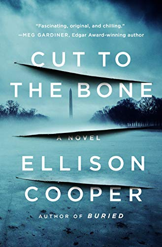 Cut to the Bone: A Novel (Agent Sayer Altair Book 3)