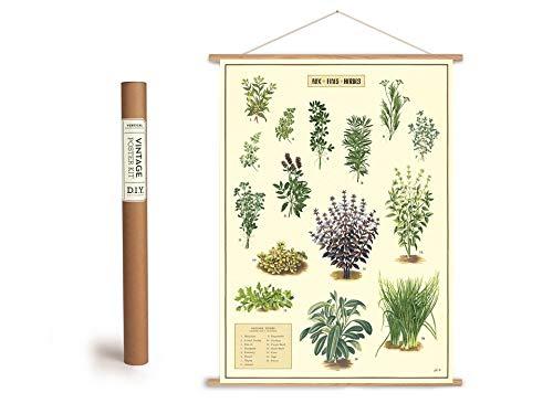 Cavallini Vintage Poster Set mit Holzleisten (Rahmen) und Schnur zum Aufhängen, Motiv Küchenkräuter, Kräuter