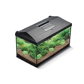 Aquael Leddy Komplett-Aquarium 105 L