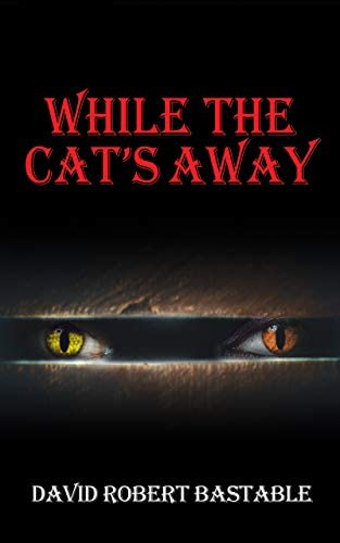 WHILE THE CAT S AWAY A twisted psychological thriller you cannot put down product image