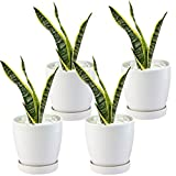"BUYMAX Plant Pots–4.7""Glazed Ceramic Flower Pot with Drainage Holes and Ceramic Tray - Gardening Home Desktop Office Windowsill Decoration Gift Set 4 - Plants NOT Included (White)"