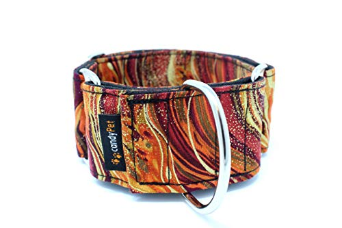 candyPet 8436570342165 Martingale Dog Collar - New Waves Model, M, New Waves Model, 120 g