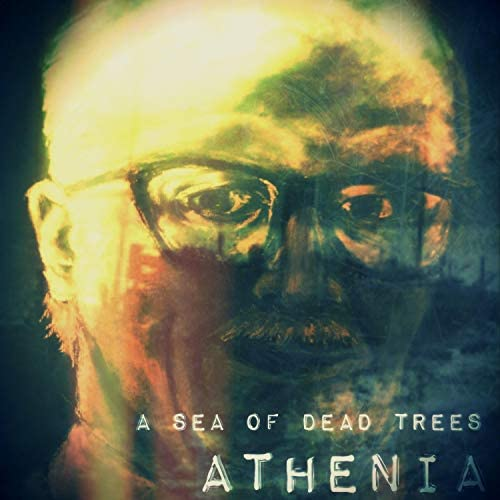 A Sea of Dead Trees