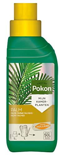 Pokon Palmen Flüssigdünger für alle Palmenarten, mit Extra Eisen, 250ml
