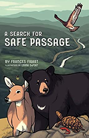A Search for Safe Passage